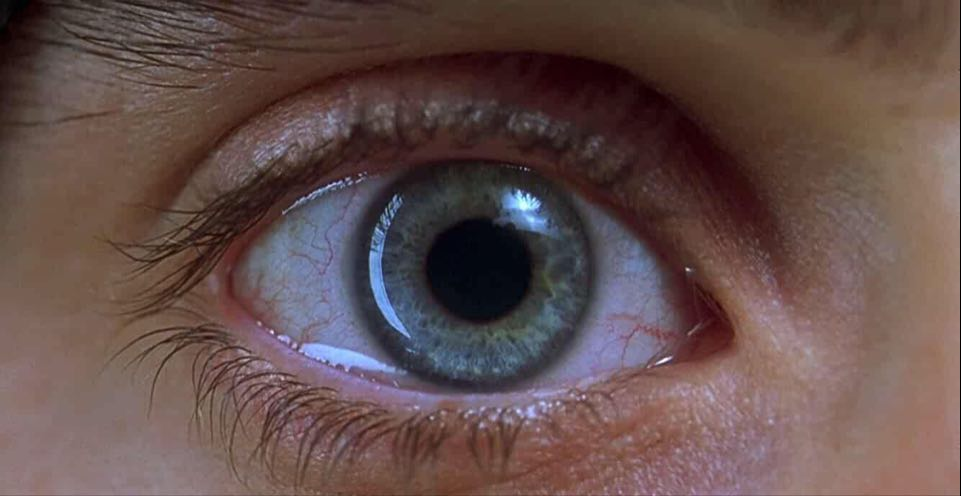 20 Years of Requiem for a Dream